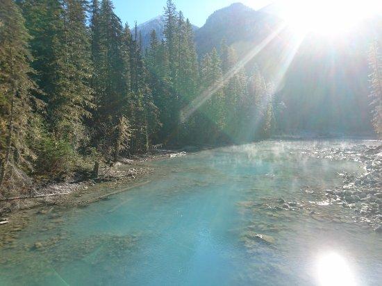 Kanadische Rockies, Kanada: Tau über dem Robson River