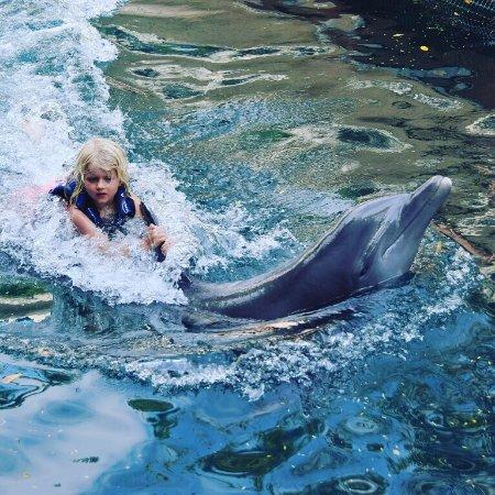 Delphinus Riviera Maya : Family time 💕💕💕