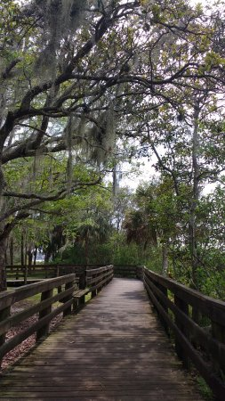 Palm Harbor, Floryda: one of the boardwalks