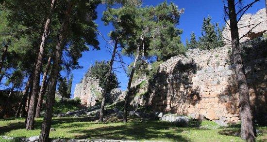 Άμφισσα, Ελλάδα: Άποψη Κάστρου των Σαλώνων