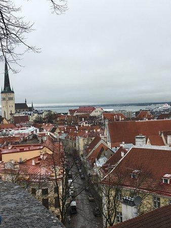 My City Hotel Tallinn: photo1.jpg