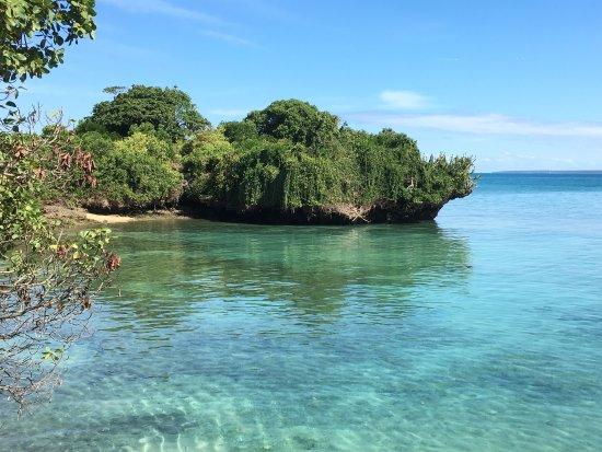 Chapwani Private Island: photo0.jpg