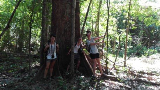 Banlung, Kambodsja: Tree Trails Travel Lodge