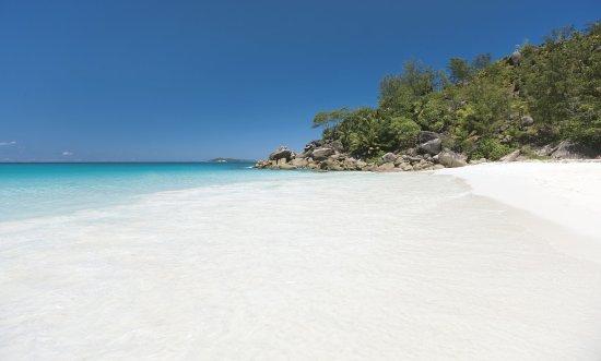 Constance Lemuria: Beach