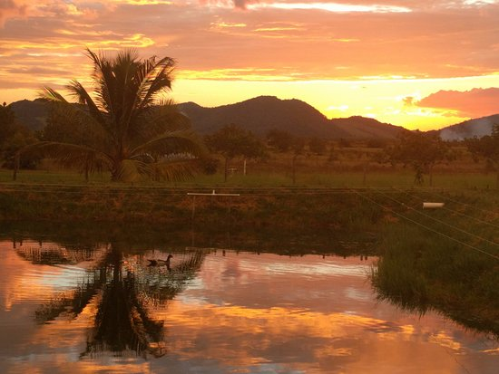 Annai, Guyana: View from the fish ponds