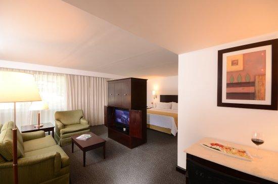 Holiday Inn Monterrey Valle: King Junior Suite Nonsmoking