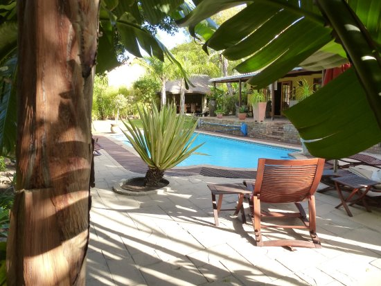 KhashaMongo Guesthouse: Blick in den Garten