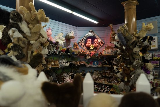 Northampton, MA: Welcome to the land of A2Z plush!  Our friendly fuzzy friends are excited to welcome you!