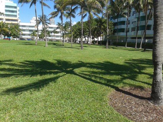 South Miami, FL: Parque, Ocean Dr con calle 3