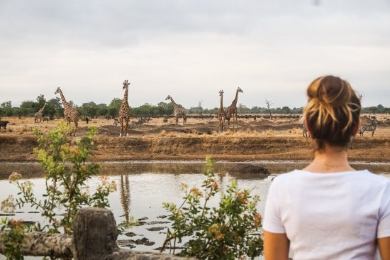 Morogoro, Tanzania: Point d'eau