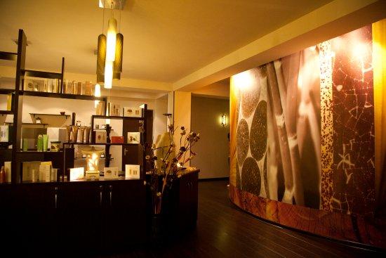 Premier Spa and DIBI MILANO Aesthetic Center