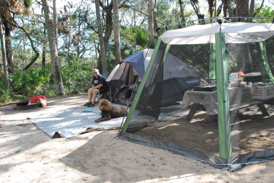 Ormond Beach, FL: Nice roomy, private camp sites! This was site #7.