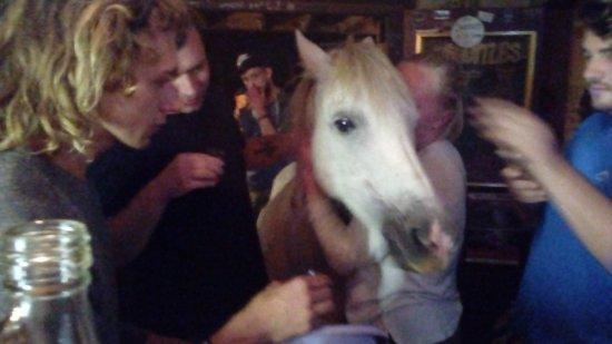 Ποταμός Storms, Νότια Αφρική: Een paard aan de bar?