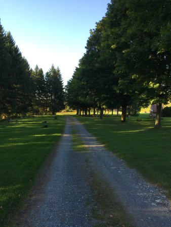 Richfield Springs, Нью-Йорк: Shady and wide RV sites