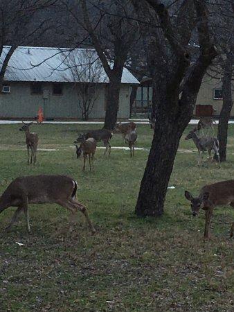Concan, TX: photo0.jpg