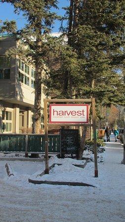 Harvest Cafe Foto