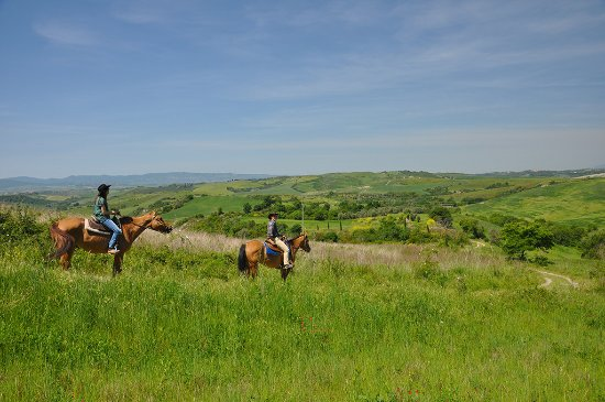 Montaione, Italien: Horse riding tours in spring time