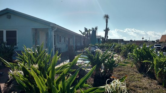 Daytona Shores Inn and Suites: Grounds could use a little TLC