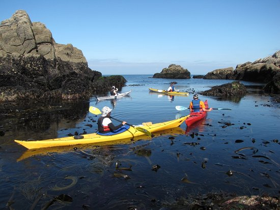 Dollar, UK: Traverse Scotlands wild coastlines by Sea Kayak!