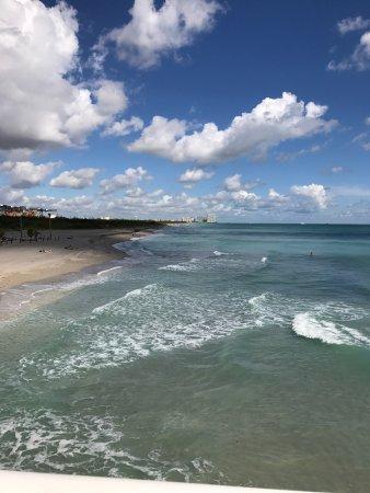 Dania Beach, FL: photo7.jpg