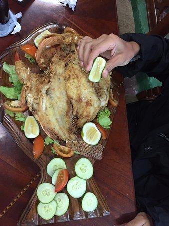 Puerto Baquerizo Moreno, الإكوادور: pescado el Brujo