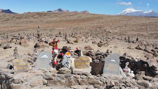 Chivay, Perù: Area