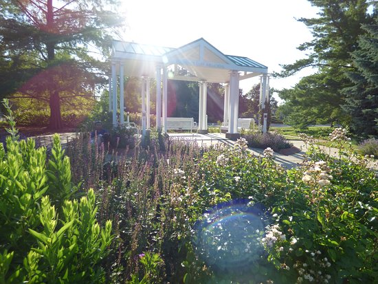 Hamann Rose Garden: Pavillion
