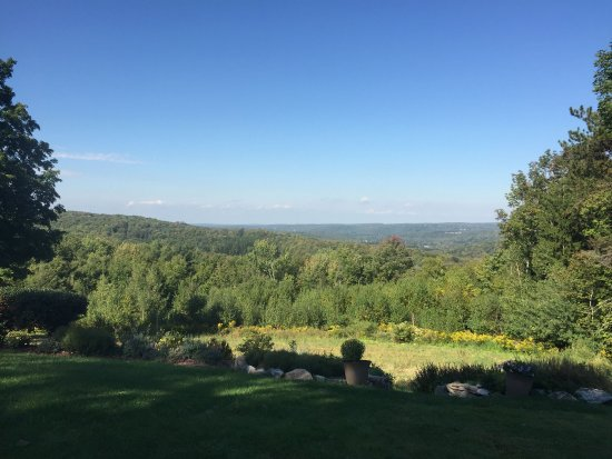 South Sterling, PA: view from the patio