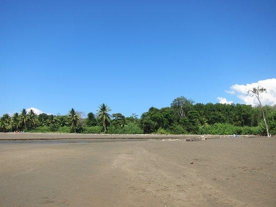 Province of Puntarenas, Costa Rica: deserto o spiaggia?