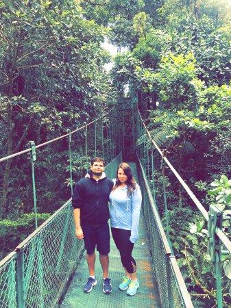 Gulf of Papagayo, คอสตาริกา: hanging bridges, Monteverde