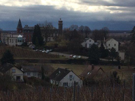 Rouffach, Fransa: Vue sur le château lors d'une promenade dans les vignes