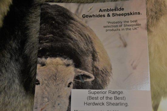 Ambleside Sheepskins, Ambleside, Cumbria, LA22 9DU. Well worth a visit.