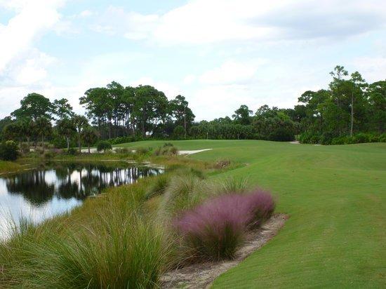Raptor Bay Golf Club: Raptor Bay
