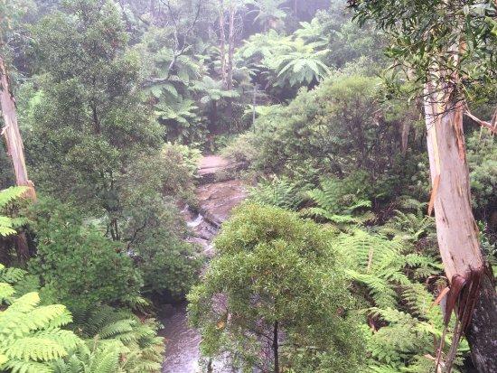 Leura, Australien: photo0.jpg