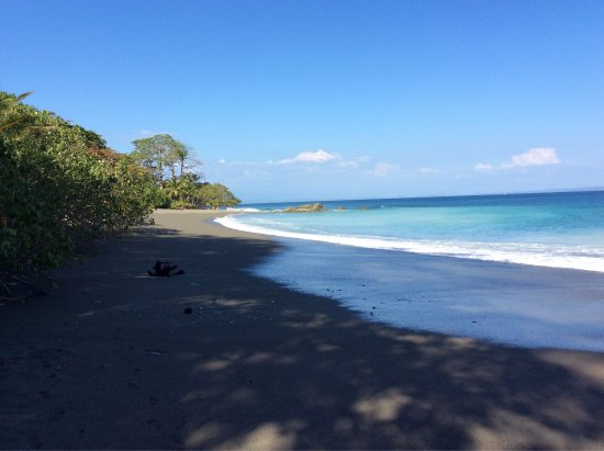 Lapa Rios Ecolodge Osa Peninsula : photo1.jpg