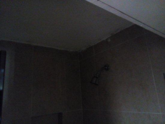 Maria del Carmen Hotel: Regadera floja, mal pintado y sin iluminación ni ventilación.