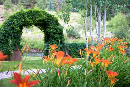 South Fork, CO: Views of the day lilies, woodvine arbor and access to the river