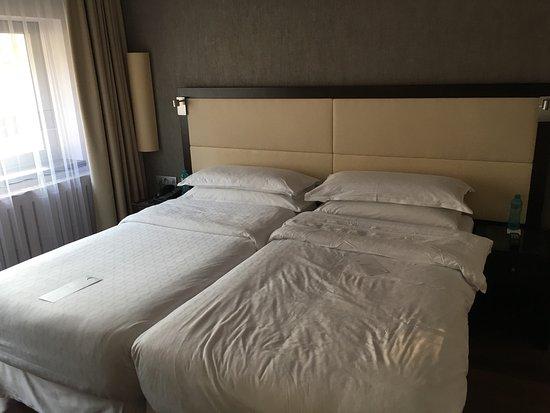 Sheraton Prague Charles Square Hotel: Standard kètàgyas szoba