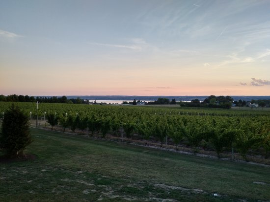 Three Brothers Wineries and Estates: Sunset from the main building looking at the lake