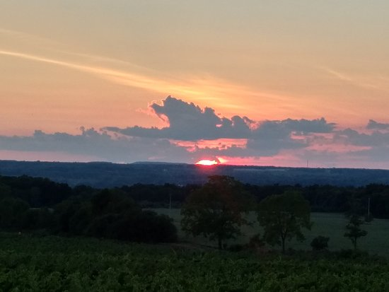 Three Brothers Wineries and Estates: sunset (duh!)