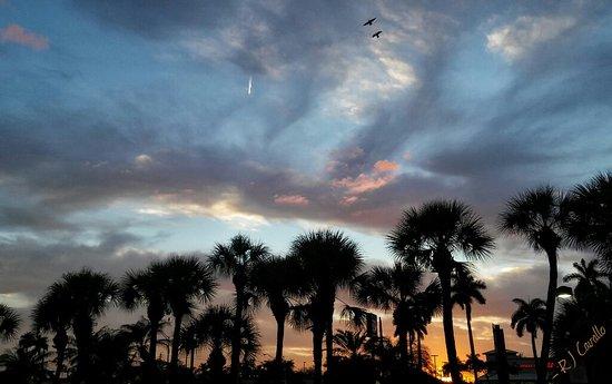 Florida City, FL: 20170221_181719-01_wm_large.jpg