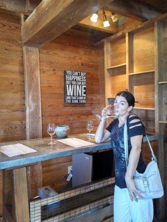 Geneva, NY: Ravine's tasting area. We loved the sign!!