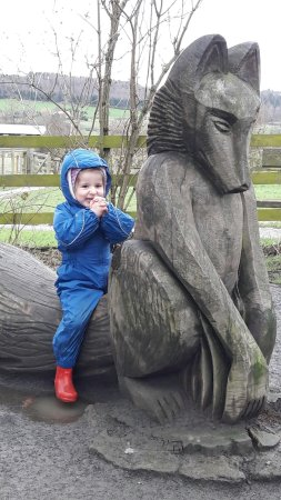 Guisborough Forest: Even the littlest ones loved it.