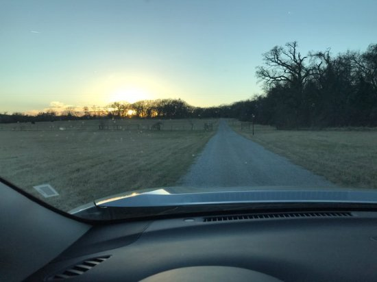Azle, TX: Road to the cabins on the grounds