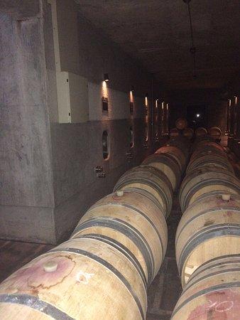 Agrelo, Argentinien: Vista no interior da vinícola