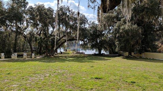 The Lake House: Backyard / Lake