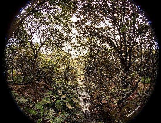 Domo herbal jard n bot nico de bogot picture of jardin for Jardin botanico bogota