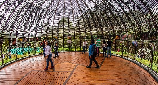 jardin botanico de bogota jose celestino mutis domo herbal jardn botnico de bogot