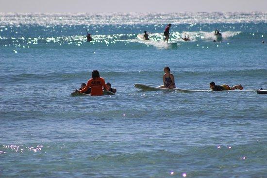 94cdfafd1f Moku Surf shop (Honolulu) - 2019 All You Need to Know BEFORE You Go (with  Photos) - TripAdvisor