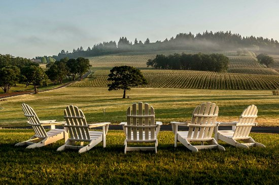 Dayton, OR: Adirondack Chairs